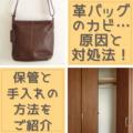 革のバッグに生えるカビの原因と対処法!保管と手入れの方法を紹介